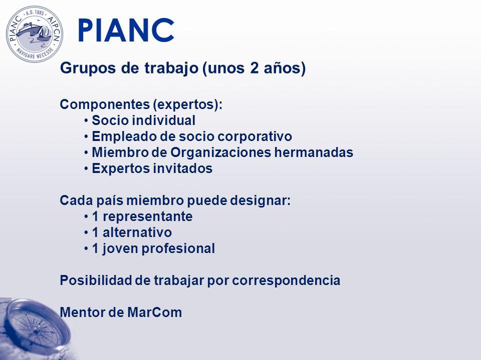 Grupos de trabajo (unos 2 años)