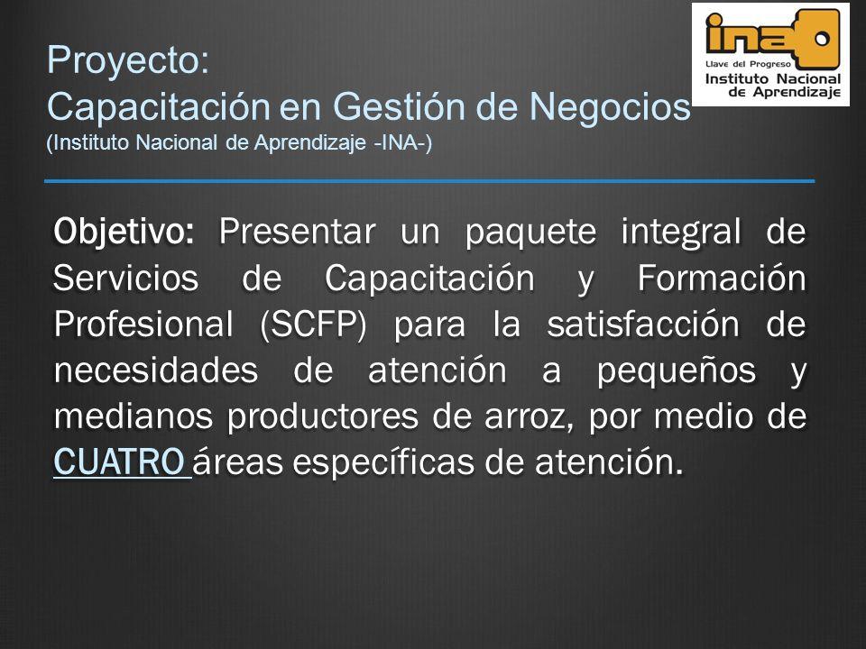 Proyecto: Capacitación en Gestión de Negocios (Instituto Nacional de Aprendizaje -INA-)
