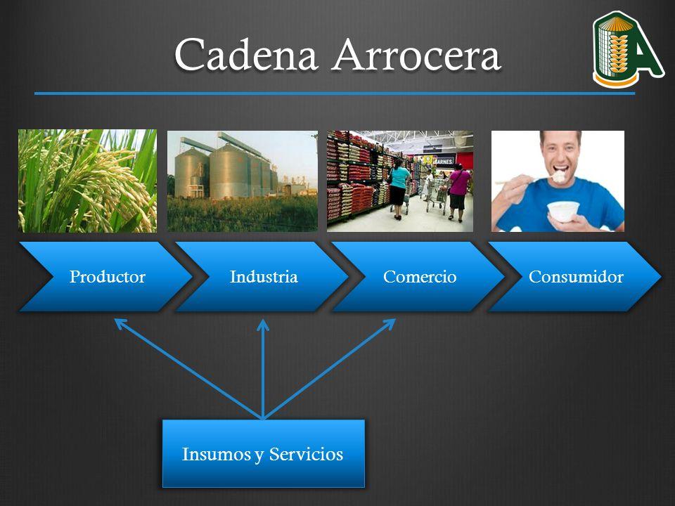 Cadena Arrocera Insumos y Servicios Productor Industria Comercio