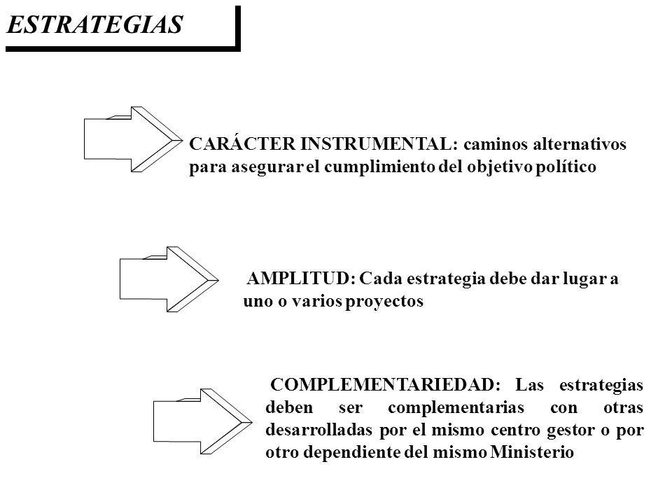 ESTRATEGIAS CARÁCTER INSTRUMENTAL: caminos alternativos para asegurar el cumplimiento del objetivo político.