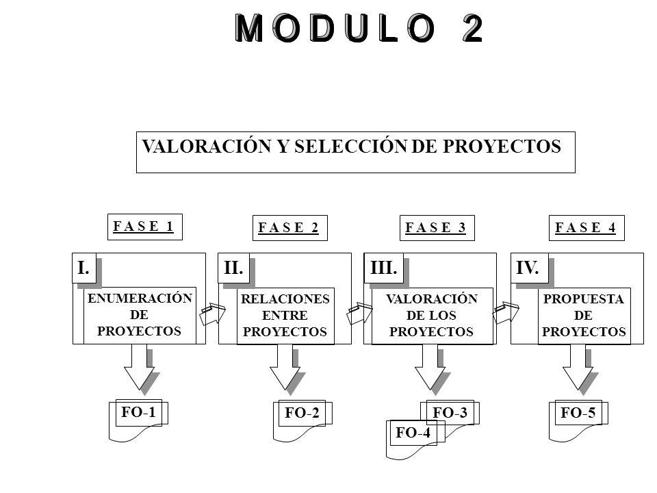 VALORACIÓN Y SELECCIÓN DE PROYECTOS