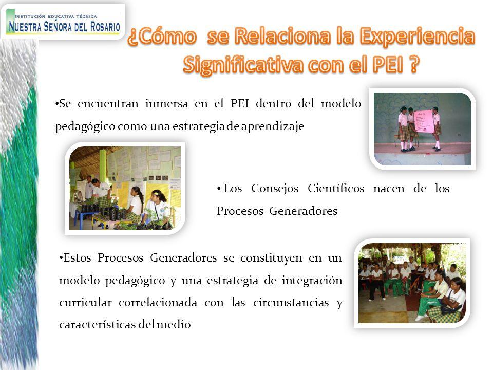 ¿Cómo se Relaciona la Experiencia Significativa con el PEI