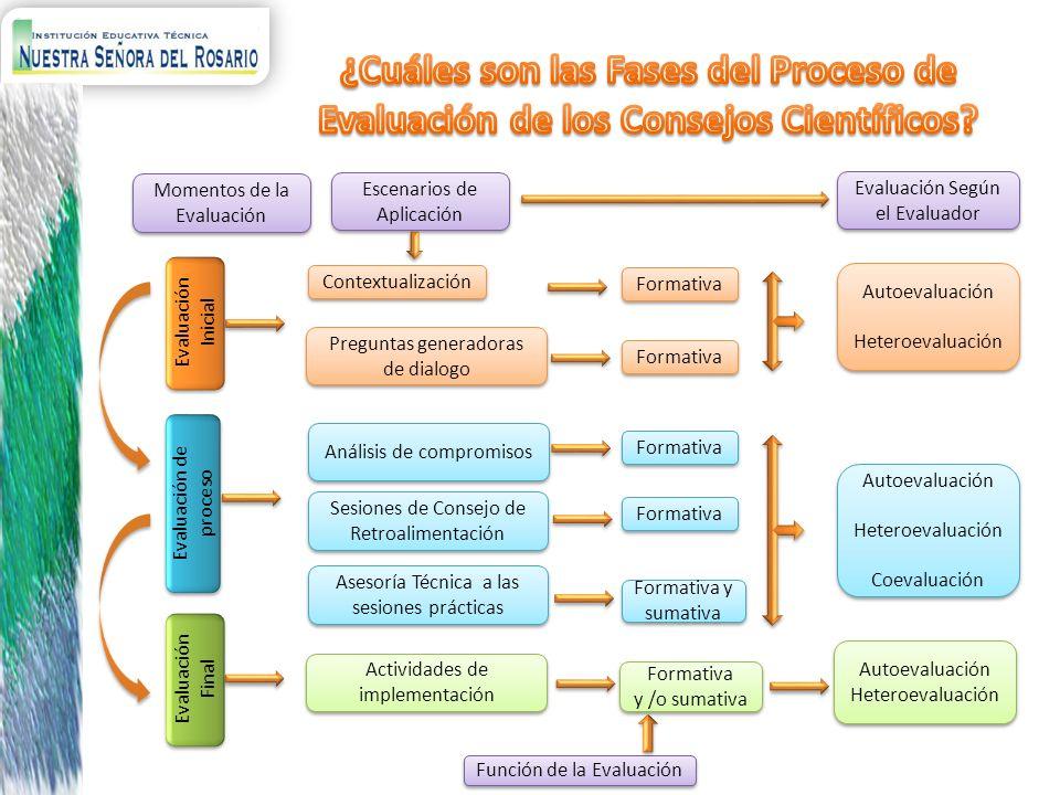 ¿Cuáles son las Fases del Proceso de Evaluación de los Consejos Científicos