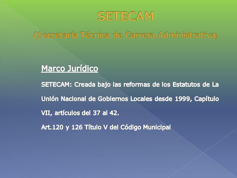 (Secretaría Técnica de Carrera Administrativa)