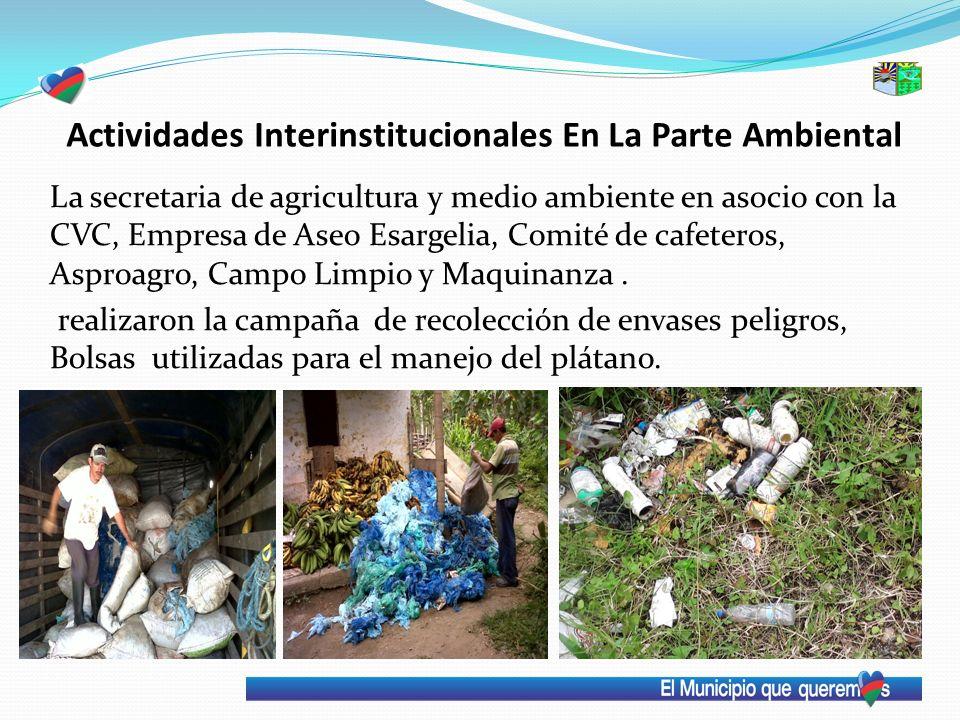 Actividades Interinstitucionales En La Parte Ambiental