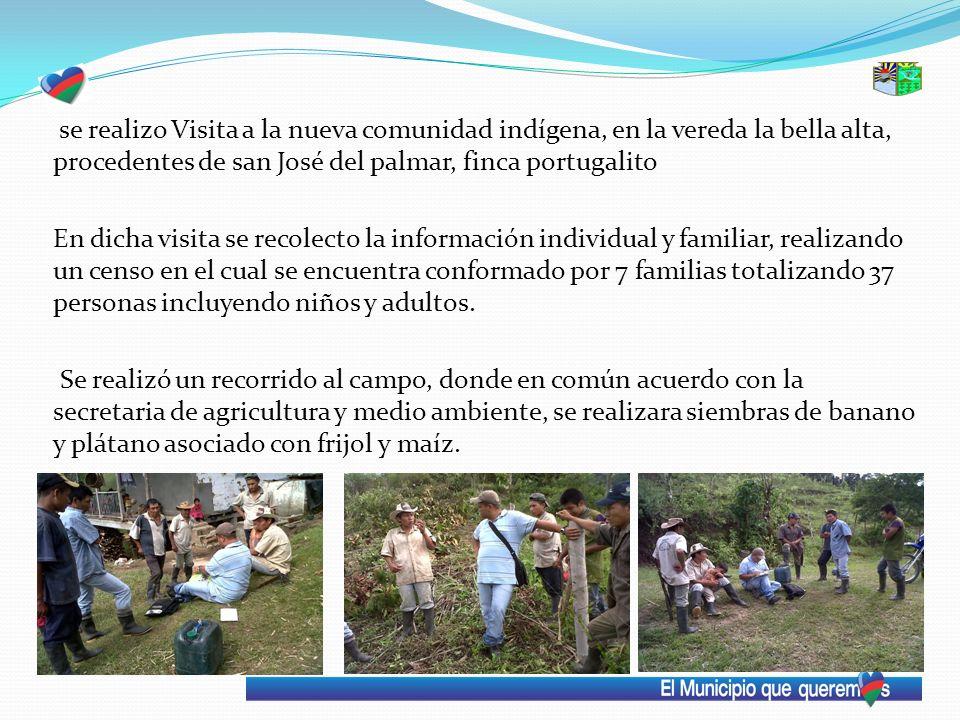 se realizo Visita a la nueva comunidad indígena, en la vereda la bella alta, procedentes de san José del palmar, finca portugalito