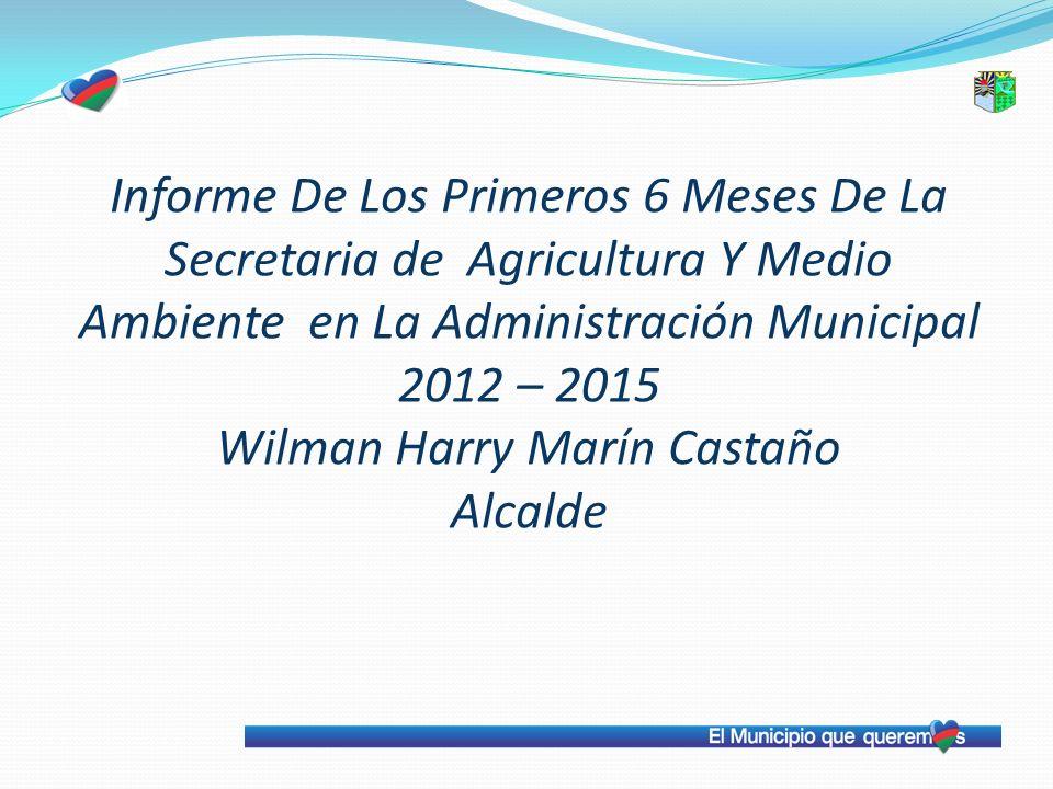 Informe De Los Primeros 6 Meses De La Secretaria de Agricultura Y Medio Ambiente en La Administración Municipal 2012 – 2015 Wilman Harry Marín Castaño Alcalde