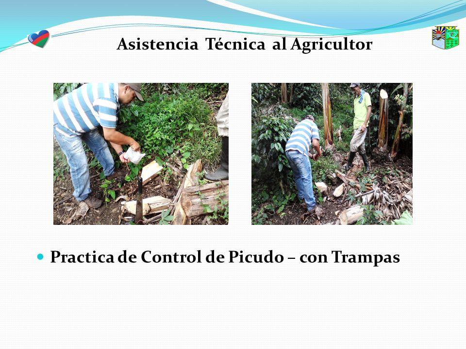 Asistencia Técnica al Agricultor