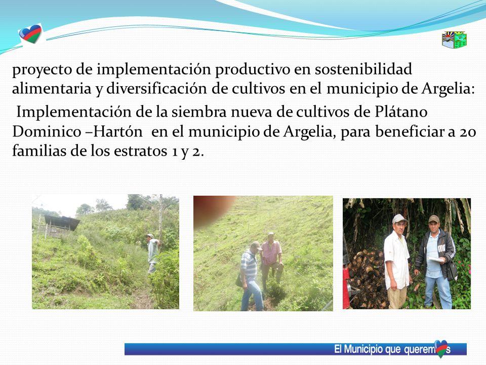 proyecto de implementación productivo en sostenibilidad alimentaria y diversificación de cultivos en el municipio de Argelia: