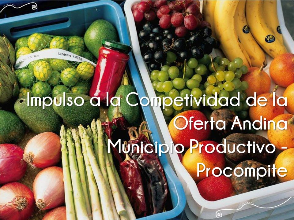 Impulso a la Competividad de la Oferta Andina