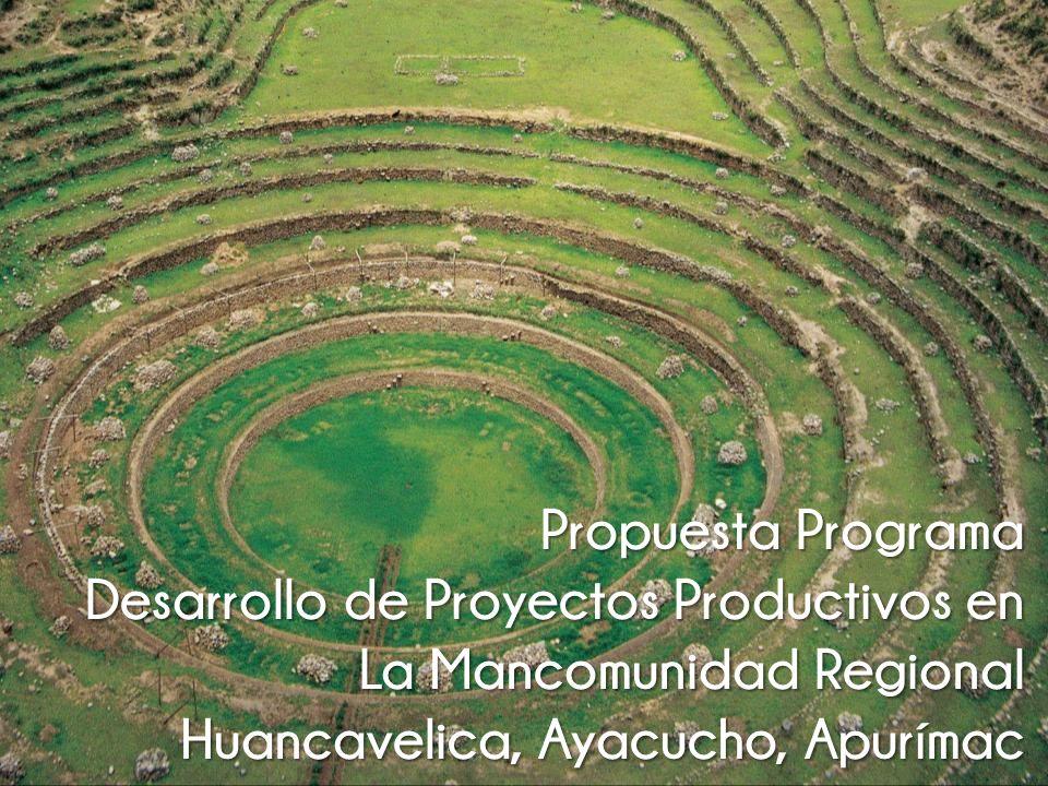 Propuesta Programa Desarrollo de Proyectos Productivos en.