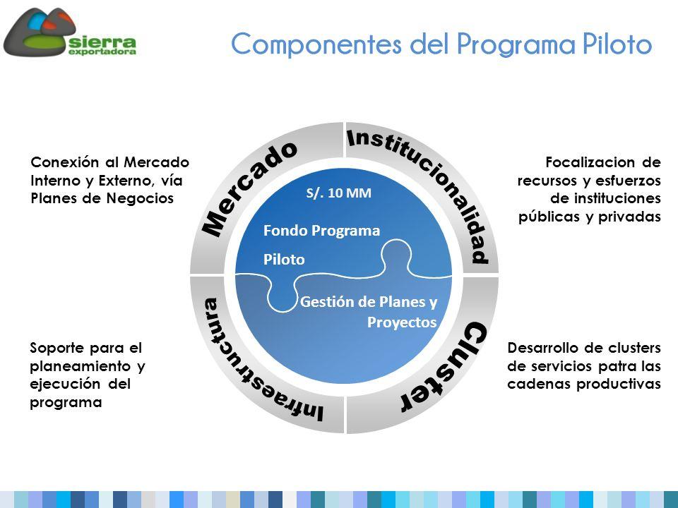 Componentes del Programa Piloto