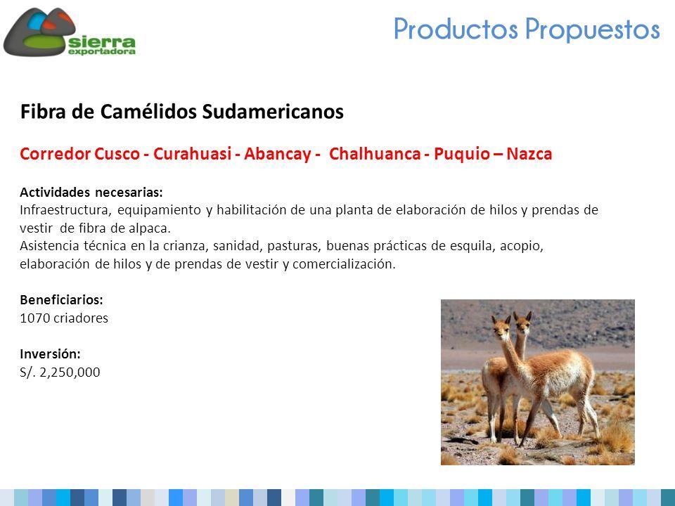 Productos Propuestos Fibra de Camélidos Sudamericanos