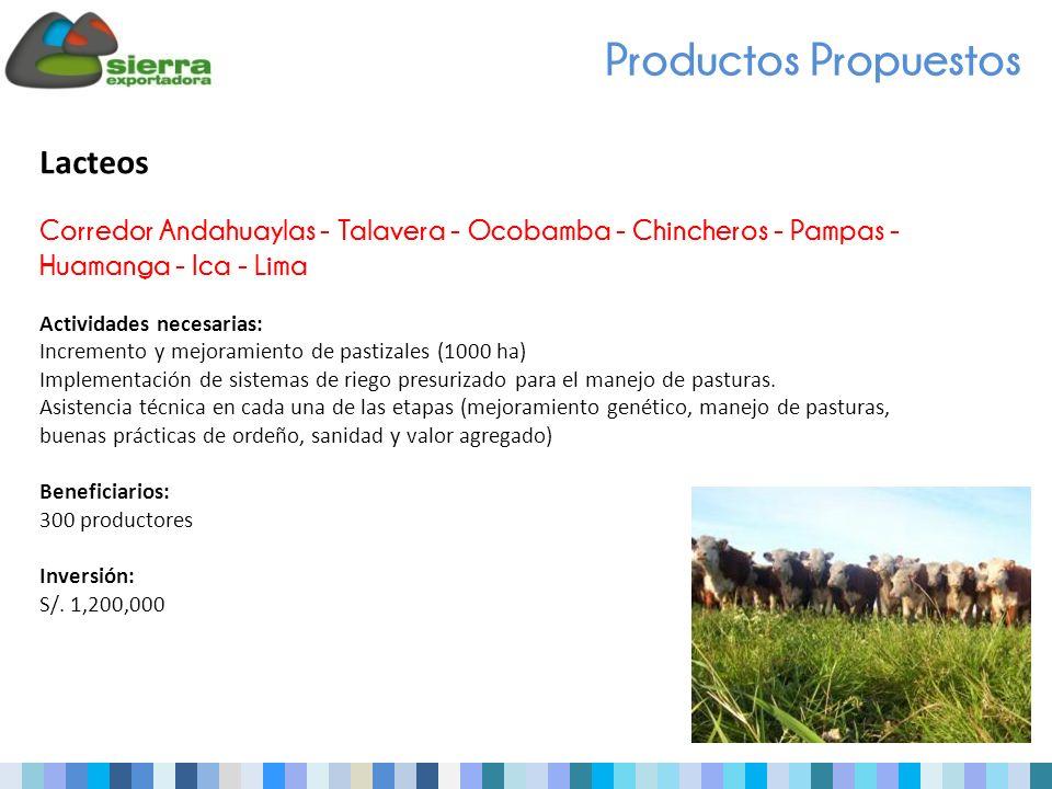 Productos Propuestos Lacteos