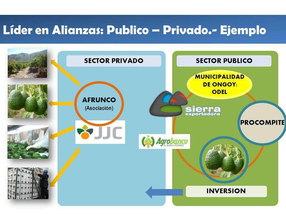 Líder en Alianzas: Publico – Privado.- Ejemplo