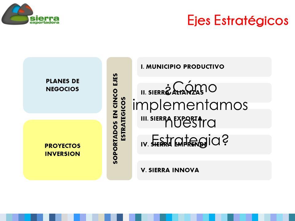 SOPORTADOS EN CINCO EJES ESTRATEGICOS