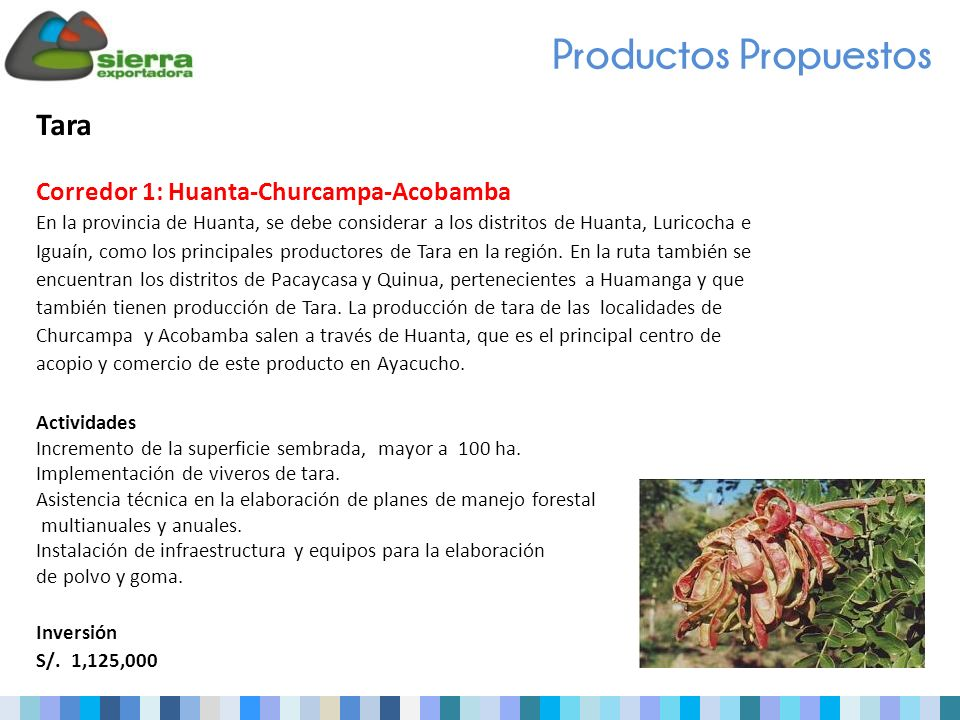 Productos Propuestos Tara Corredor 1: Huanta-Churcampa-Acobamba