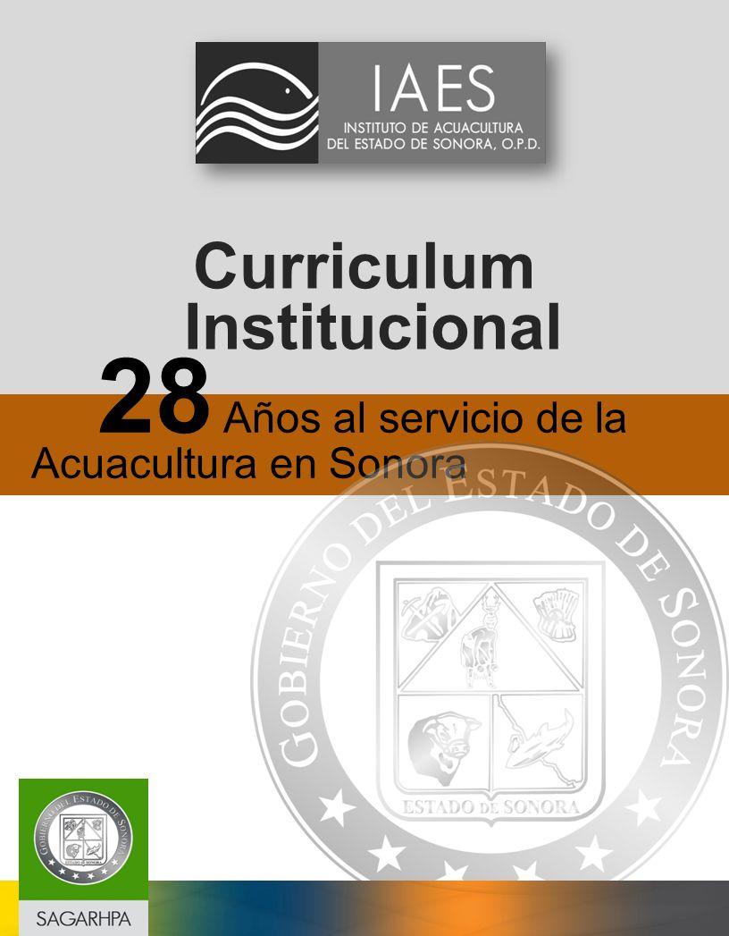 Curriculum Institucional