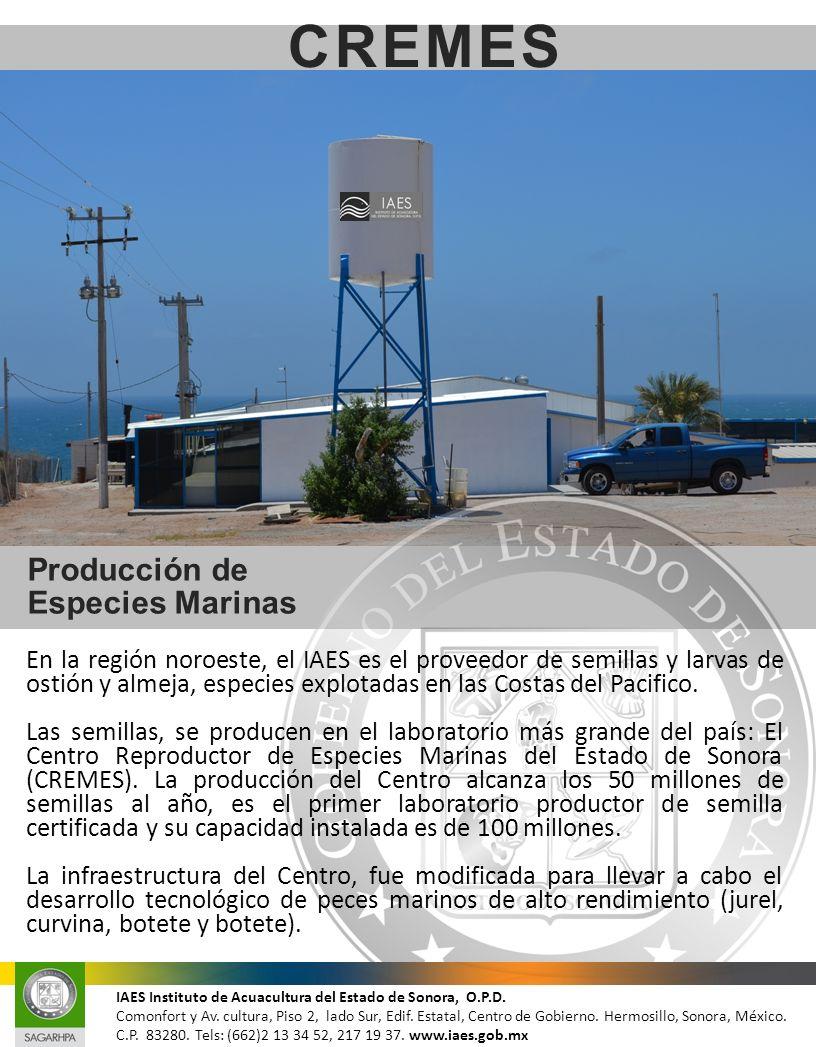 CREMES Producción de Especies Marinas