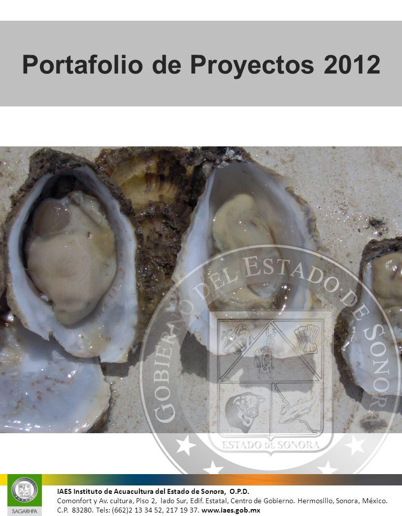 Portafolio de Proyectos 2012