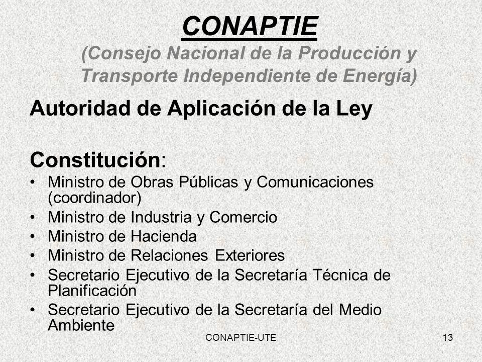 CONAPTIE (Consejo Nacional de la Producción y Transporte Independiente de Energía)