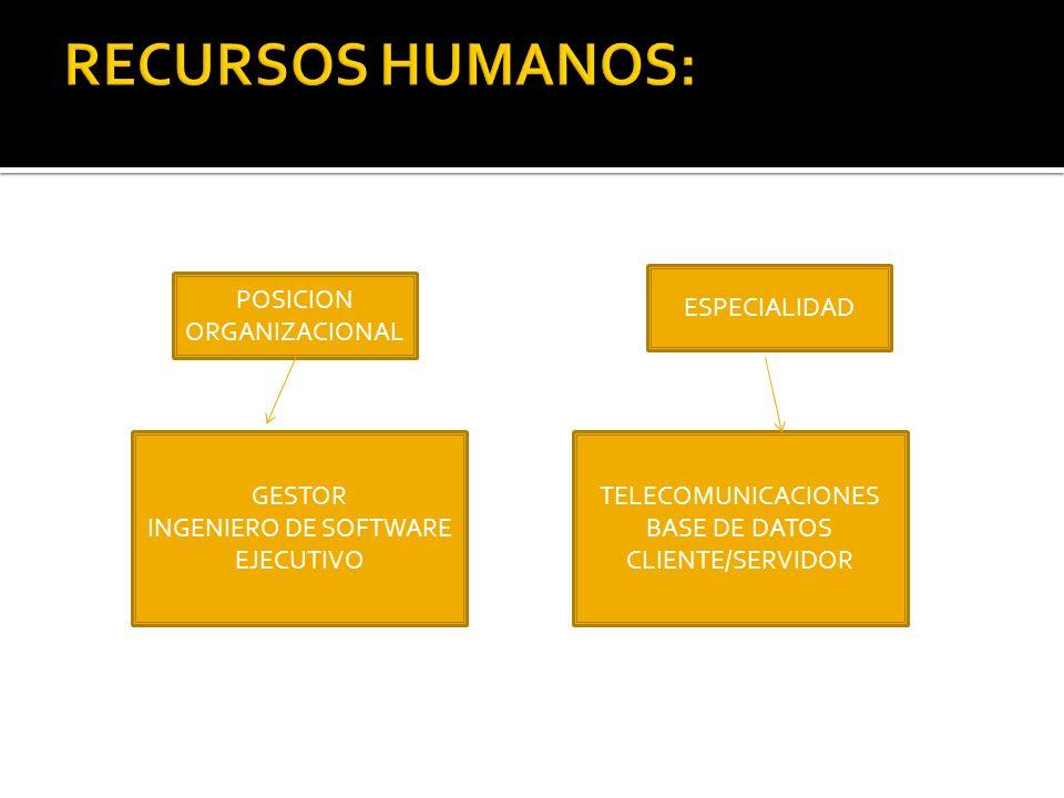 RECURSOS HUMANOS: POSICION ORGANIZACIONAL GESTOR