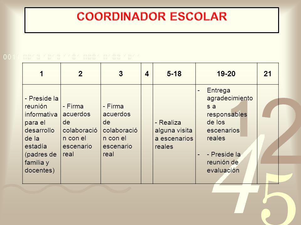 COORDINADOR ESCOLAR 1 2 3 4 5-18 19-20 21