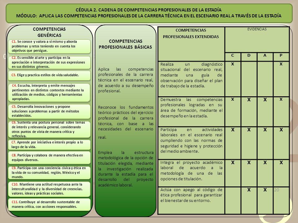 CÉDULA 2. CADENA DE COMPETENCIAS PROFESIONALES DE LA ESTADÍA