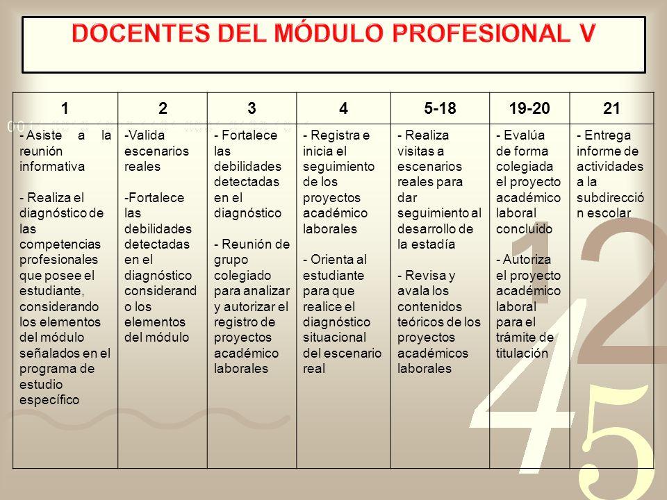 DOCENTES DEL MÓDULO PROFESIONAL V