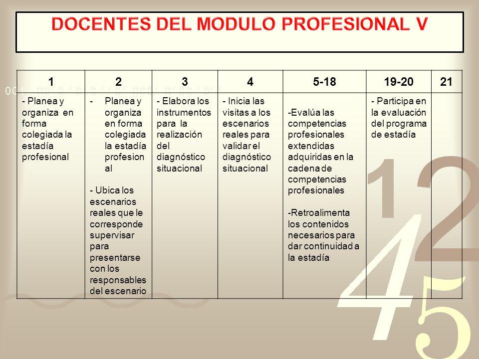 DOCENTES DEL MODULO PROFESIONAL V