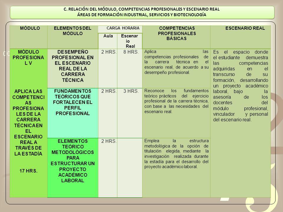 DESEMPEÑO PROFESIONAL EN EL ESCENARIO REAL DE LA CARRERA TÉCNICA