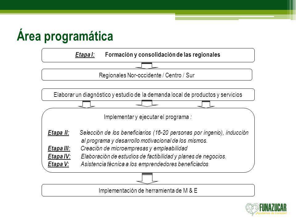 Área programática Etapa I: Formación y consolidación de las regionales