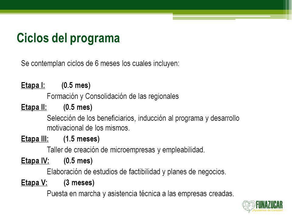 Ciclos del programa Se contemplan ciclos de 6 meses los cuales incluyen: Etapa I: (0.5 mes)