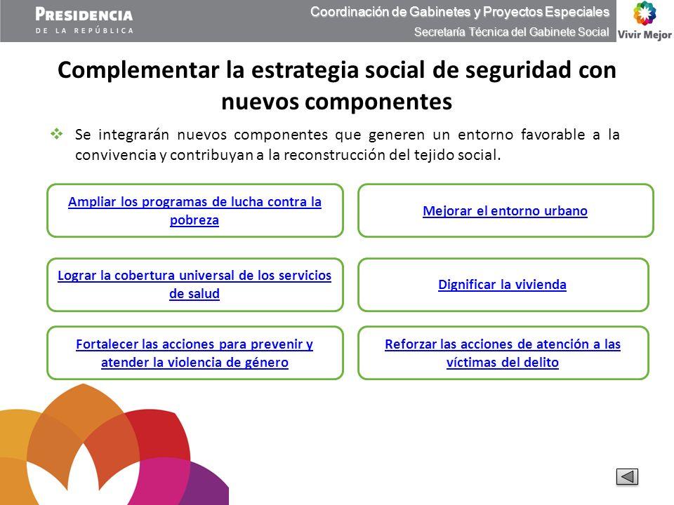 Complementar la estrategia social de seguridad con nuevos componentes