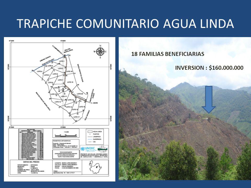 TRAPICHE COMUNITARIO AGUA LINDA