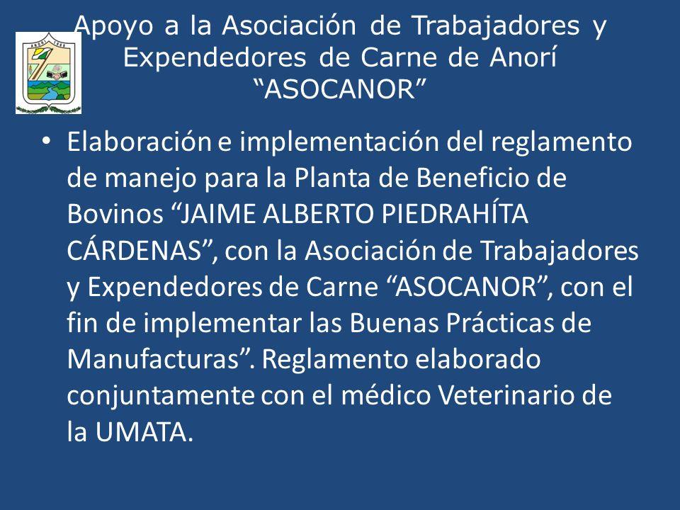 Apoyo a la Asociación de Trabajadores y Expendedores de Carne de Anorí ASOCANOR