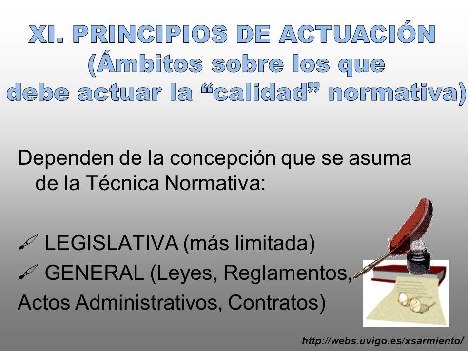 XI. PRINCIPIOS DE ACTUACIÓN (Ámbitos sobre los que