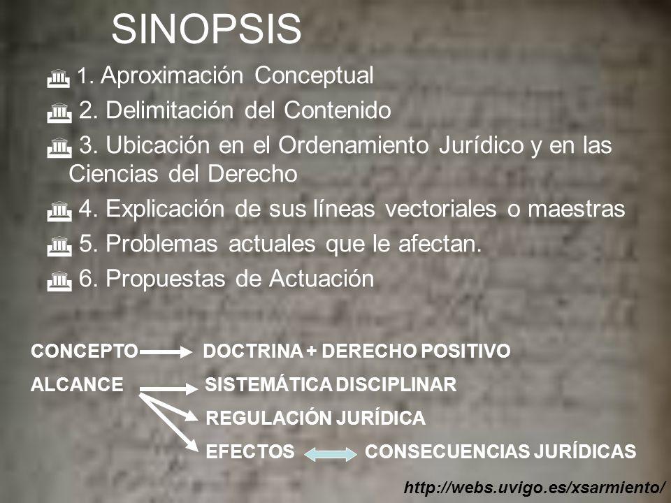 SINOPSIS 2. Delimitación del Contenido