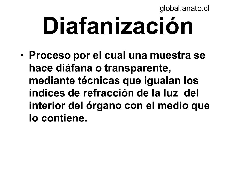 global.anato.cl Diafanización.