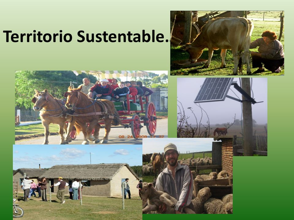 Territorio Sustentable…..