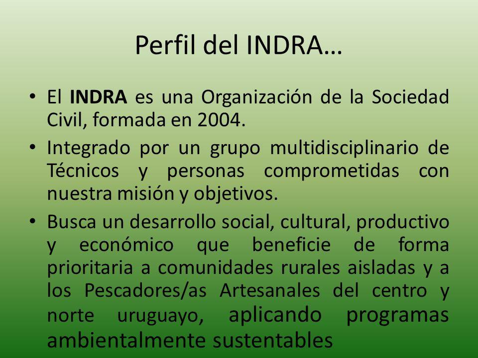 Perfil del INDRA… El INDRA es una Organización de la Sociedad Civil, formada en 2004.
