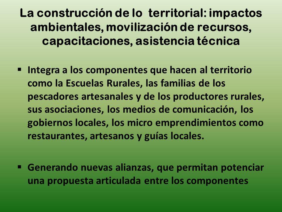 La construcción de lo territorial: impactos ambientales, movilización de recursos, capacitaciones, asistencia técnica