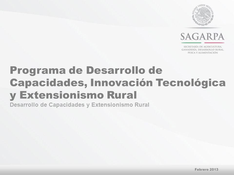Programa de Desarrollo de Capacidades, Innovación Tecnológica y Extensionismo Rural