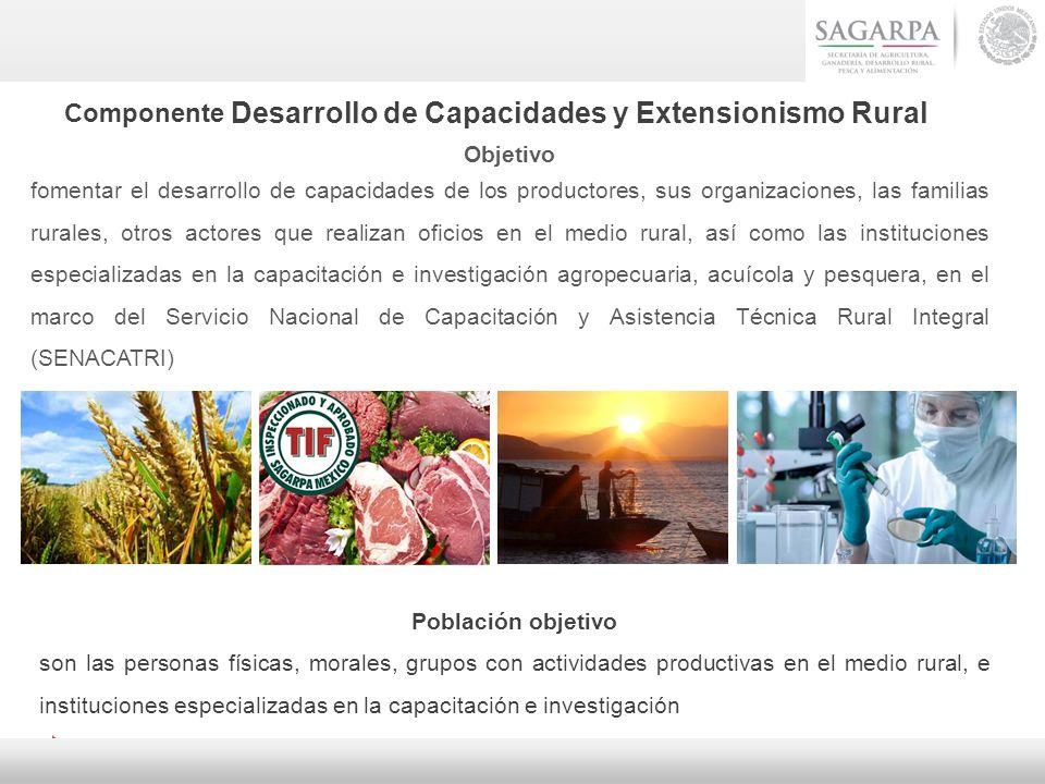Componente Desarrollo de Capacidades y Extensionismo Rural