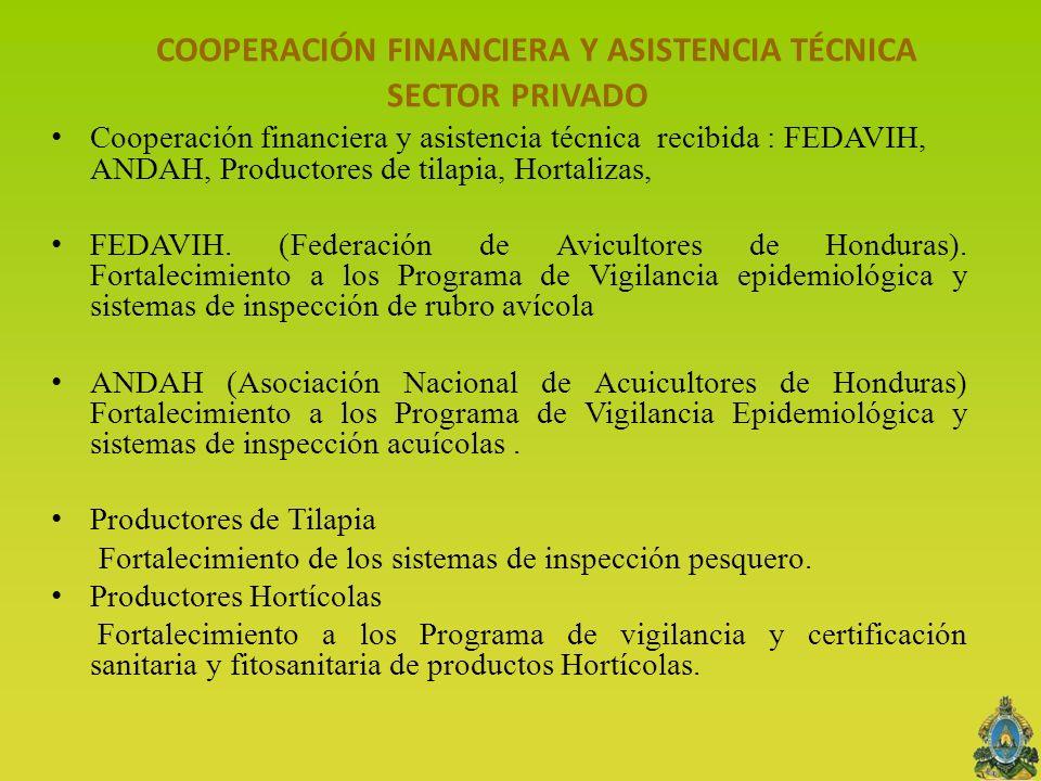 COOPERACIÓN FINANCIERA Y ASISTENCIA TÉCNICA SECTOR PRIVADO