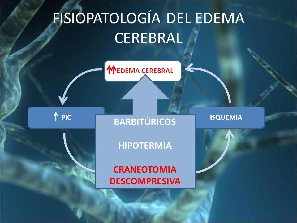 FISIOPATOLOGÍA DEL EDEMA CEREBRAL