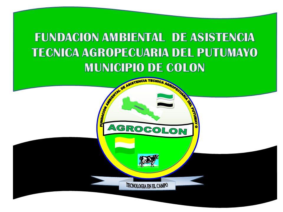 FUNDACION AMBIENTAL DE ASISTENCIA TECNICA AGROPECUARIA DEL PUTUMAYO