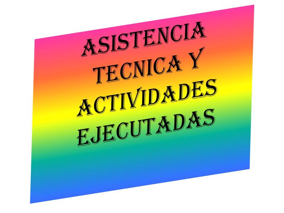ASISTENCIA TECNICA Y ACTIVIDADES EJECUTADAS