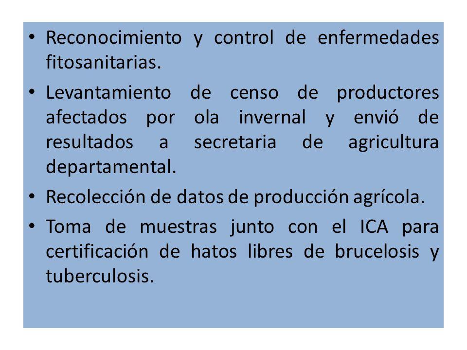 Reconocimiento y control de enfermedades fitosanitarias.