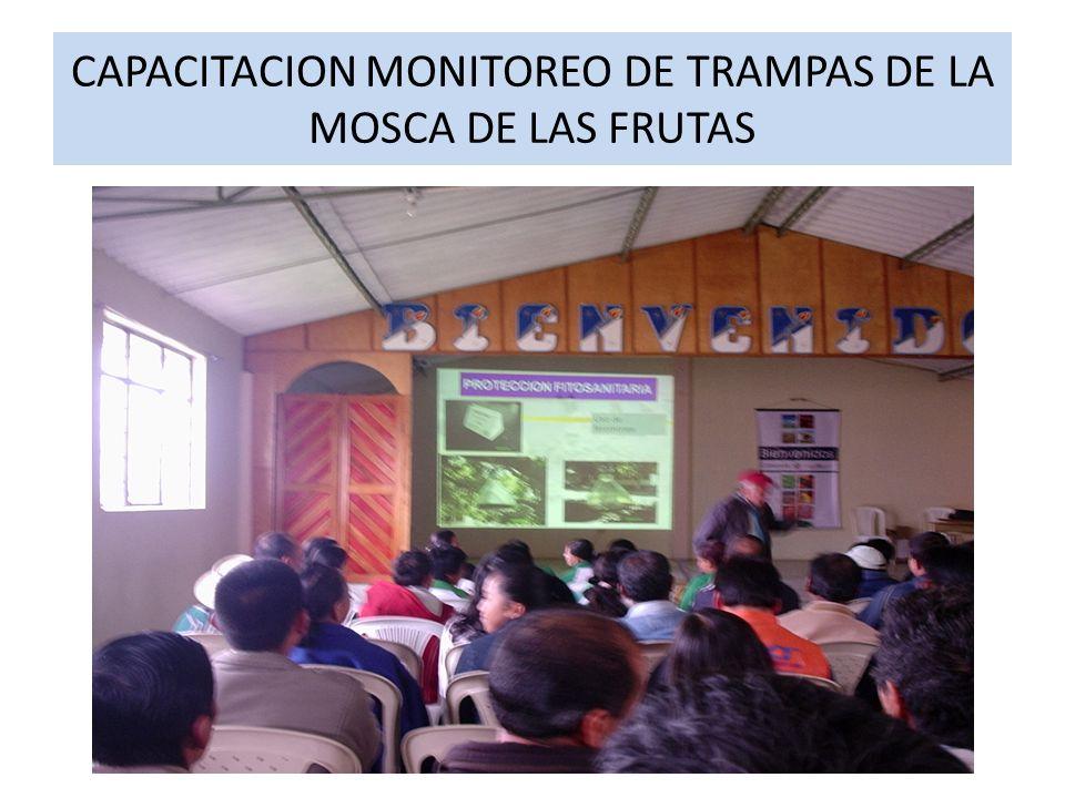 CAPACITACION MONITOREO DE TRAMPAS DE LA MOSCA DE LAS FRUTAS